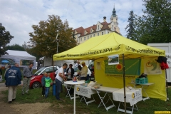 03_Ökomarkt_Donauwörth_03.09.2017