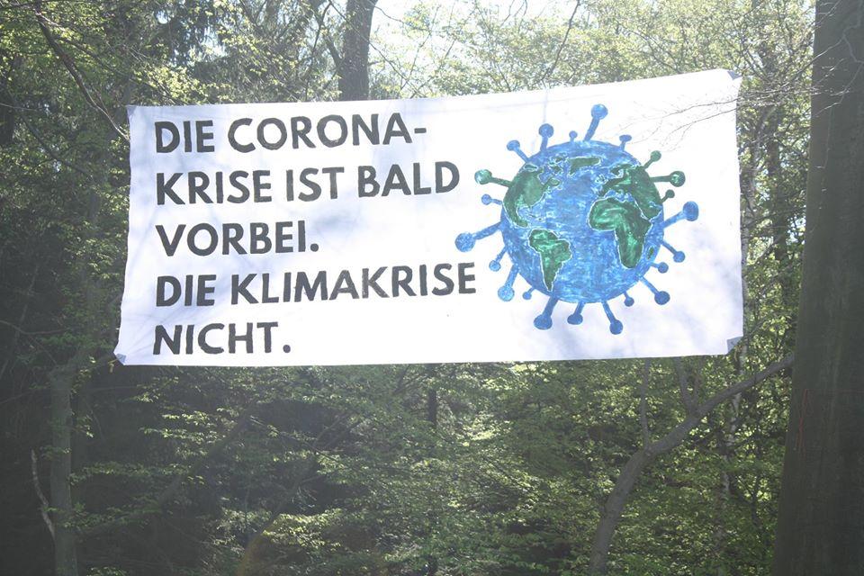 Foto: S.Jung, Transparent im Aachener Wald